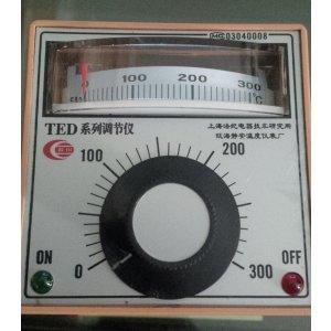 TEMPERATURE CONTROLLER 300'C